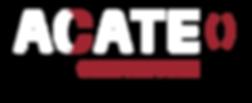 logo_CONSTR.png