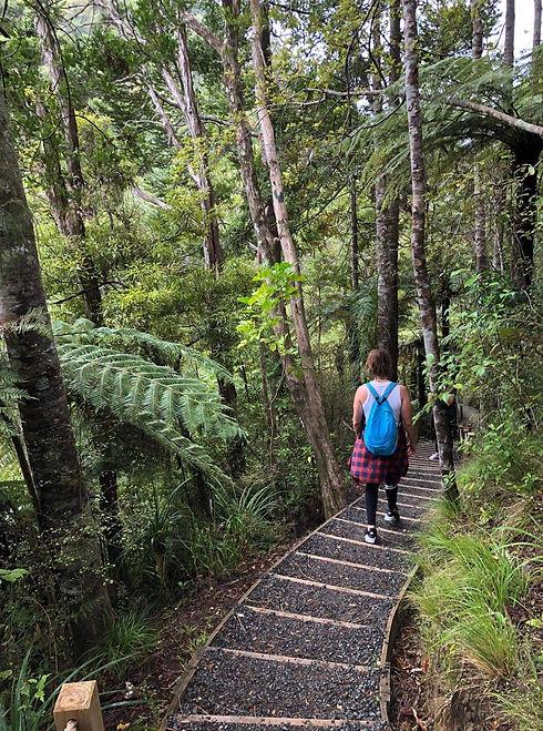 Shelley hiking in Waitakere bush.JPG
