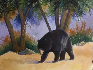 ...Boo Boo bear...a Cinderella story...