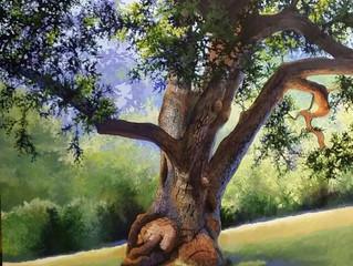 Chaw'se Oak