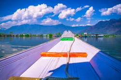 Srinagar 11