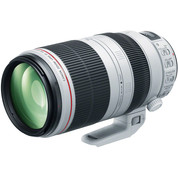 CANON ULTRASONIC EF 100-400mm 1 4.5-5.6.