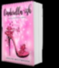 BookBrushImage-2020-0-5-13-4717.png