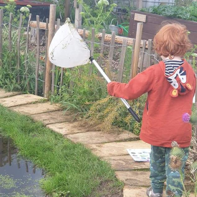 Children enjoying pond dipping