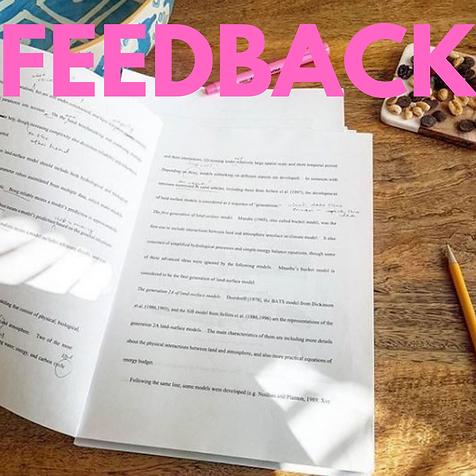 feedback-1.png