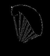 paraglider-1698729_960_720_edited.png