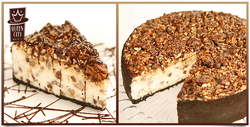 turtle cheesecake.png