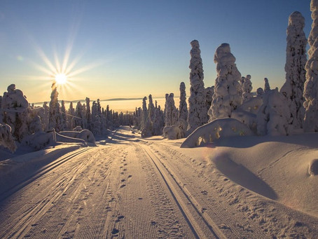Как водить зимой при ярком солнце? Пять советов автомобилистам
