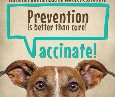 August is Pet Immunization Awareness Month!