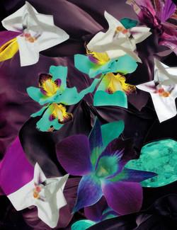 2018-Pond flowers
