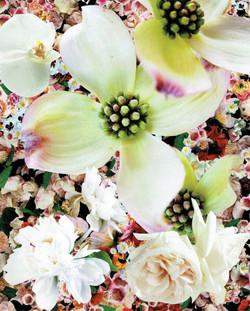Retroflowers