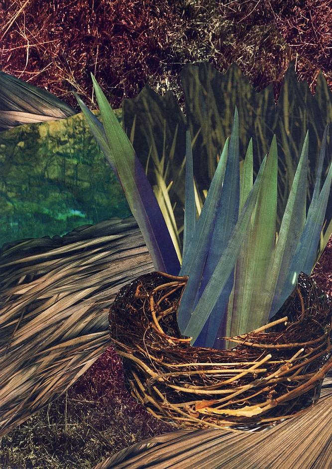 2007 - Nest.jpg