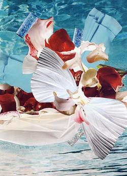2011 - Sea Intensity.jpg