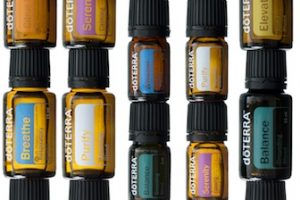 OilBlends-photo-300x200.jpg