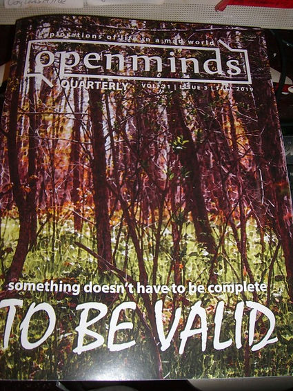 OPEN MINDS FRONT COVER.JPG