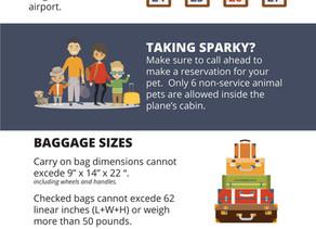 THANKSGIVING AIR TRAVEL TIPS