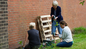Green Space Volunteers Wanted – come and help at St Andrew's Garden!