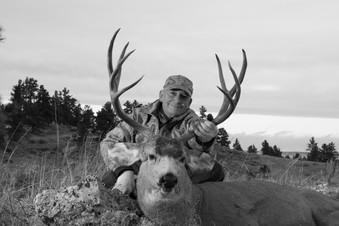 2011 Mule Deer BW.jpg