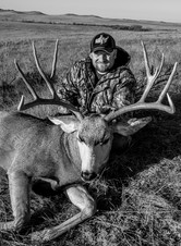 2014 deer BW.jpg