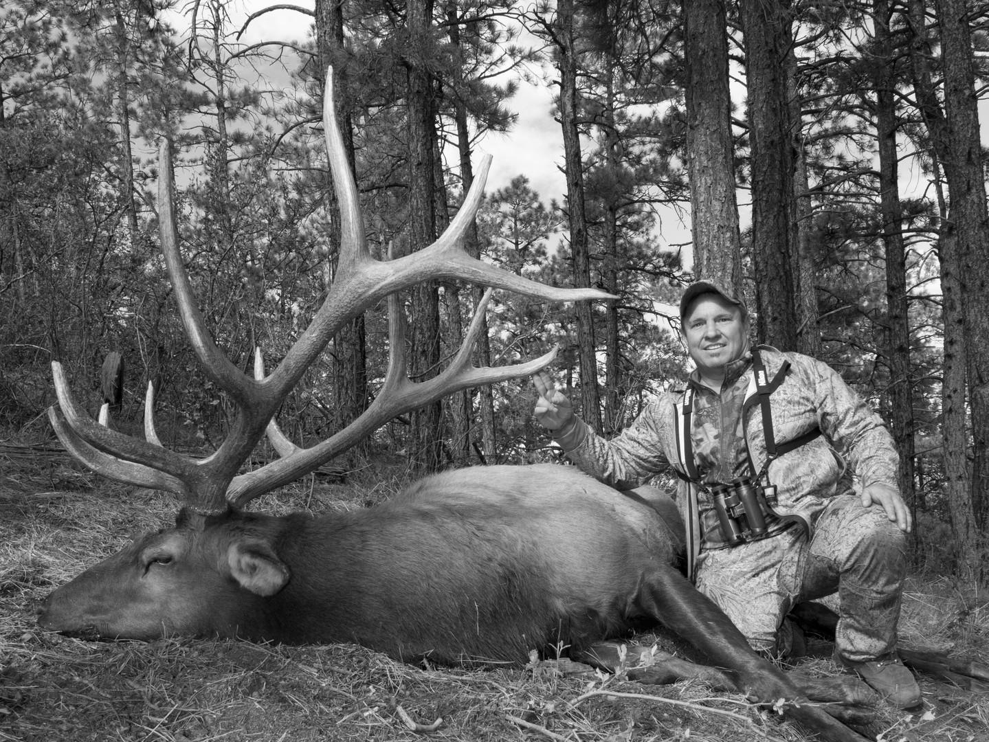 2011 Elk BW.jpg