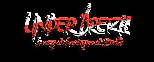 logo magasine.png