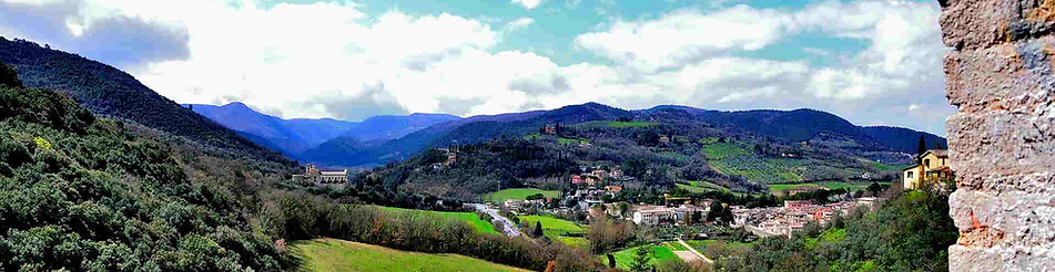 Montone.png