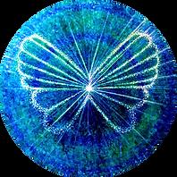 Cristina Balan Butterfly circle image.pn