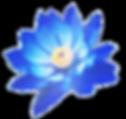 Ancient Heart Logo transparent backgroun