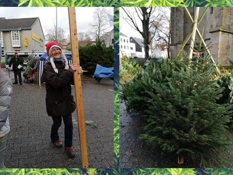 Weihnachtsbaumverkauf 2020