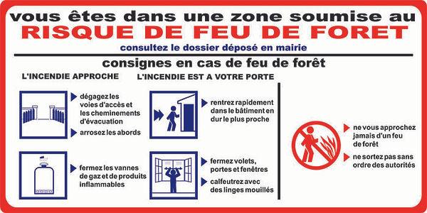 feu_de_foret_web.jpg