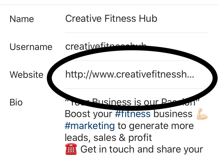 How we use the link in our bio to showcase our website
