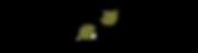 Visfl Logo copy.png