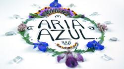 Aria-Art