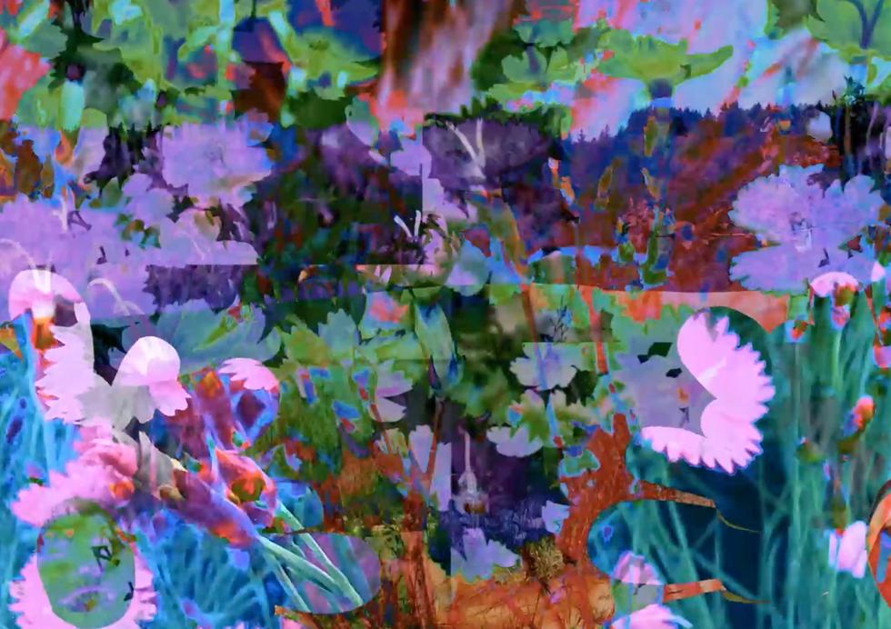 Screen Shot 2021-05-14 at 5.06.15 PM.PNG