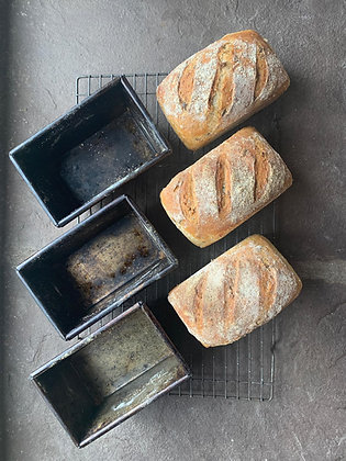 Introduction to Bread - Glorious Bread