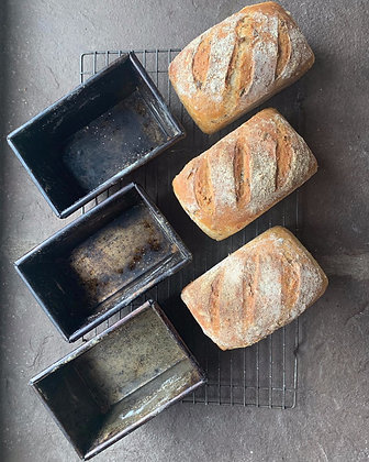 Introduction to Bread - Glorious Bread SOLD OUT