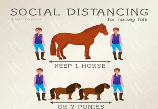 horsy distancing v3.jpg