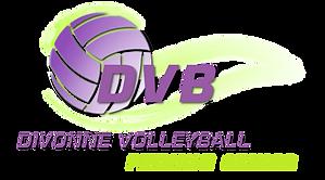 LOGO COMPLET DVB.png
