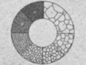 comparaison-taille-de-grains-astm-e112-l