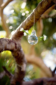 Hanging Glass Globes