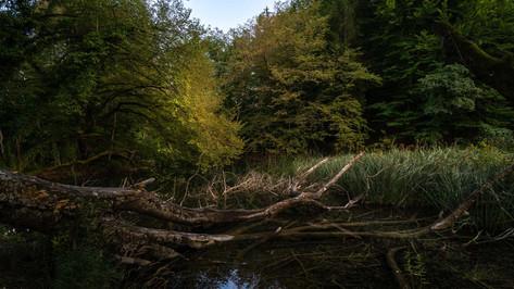 Plitvitzer Seen / Sept 2020