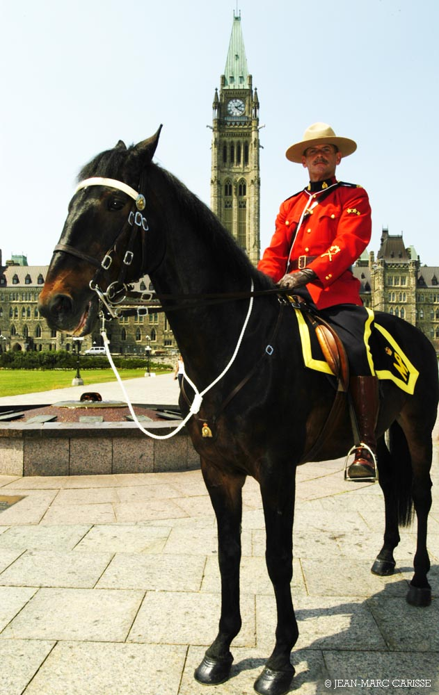 RCMP_on_horse_Parliament_Hill_photo_©_Jean-Marc_Carisse_2005