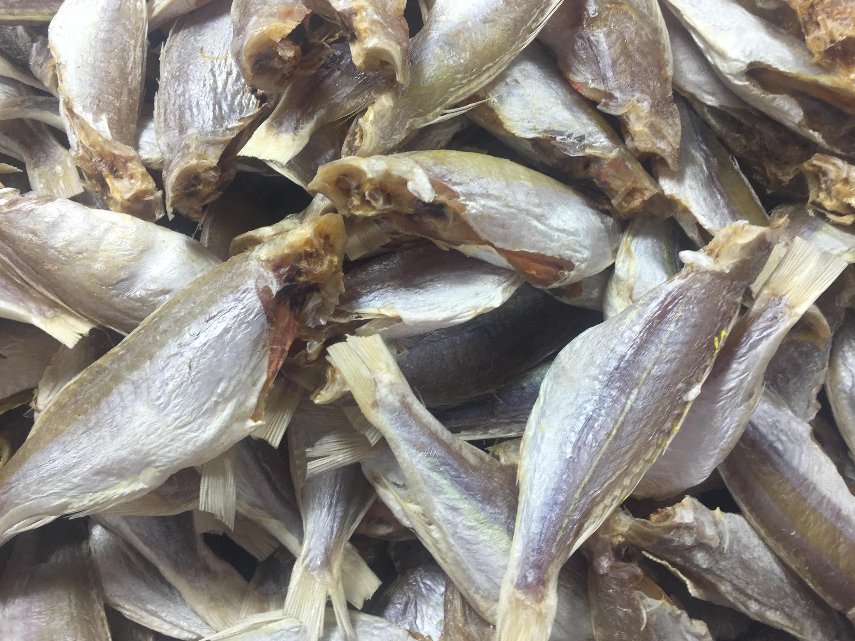 Dry White Croaker