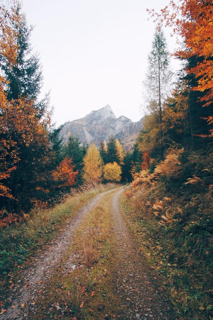 Nationalpark Gesäuse im Herbst