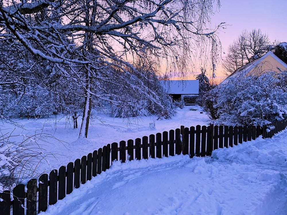 Ein zugeschneiter Hof im Waldviertel