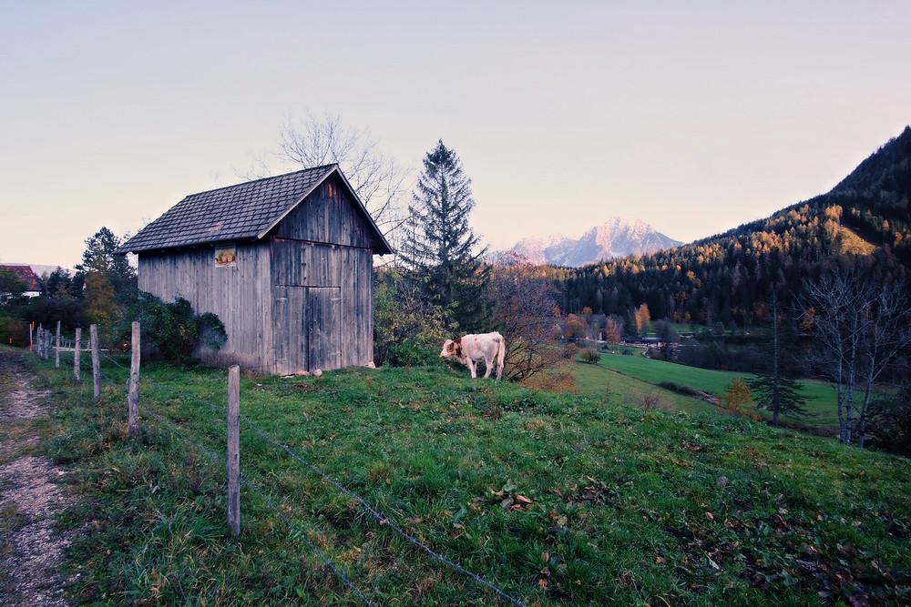 Landschaftsfotografie in Oberösterreich