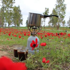 A pakal kafe set up among red flowers