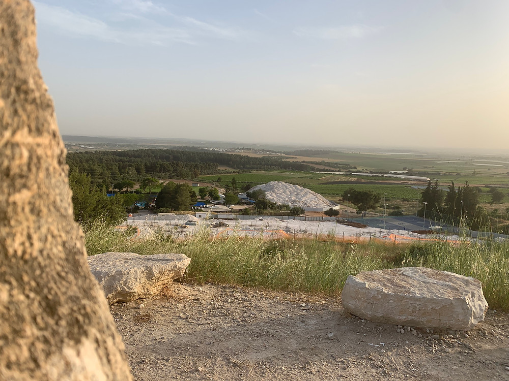 A view of a forest and fields from the Karmei Yosef Lookout