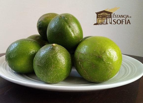 Limón grande / Porción
