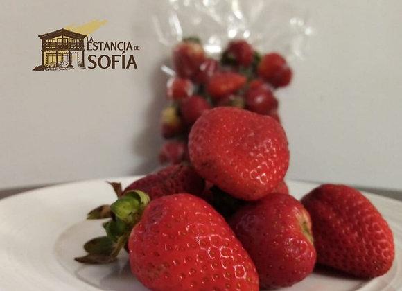 Frutillas / Porción